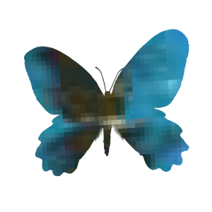 PHP Butterfly